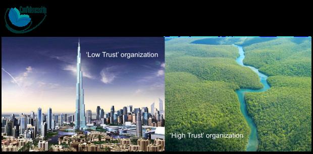 high trust organization
